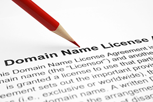 Domain Name Registration Licence